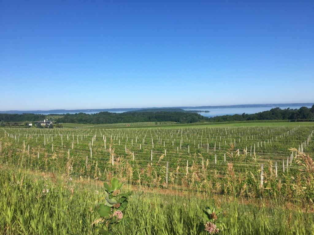 old mission leelanau county harvest